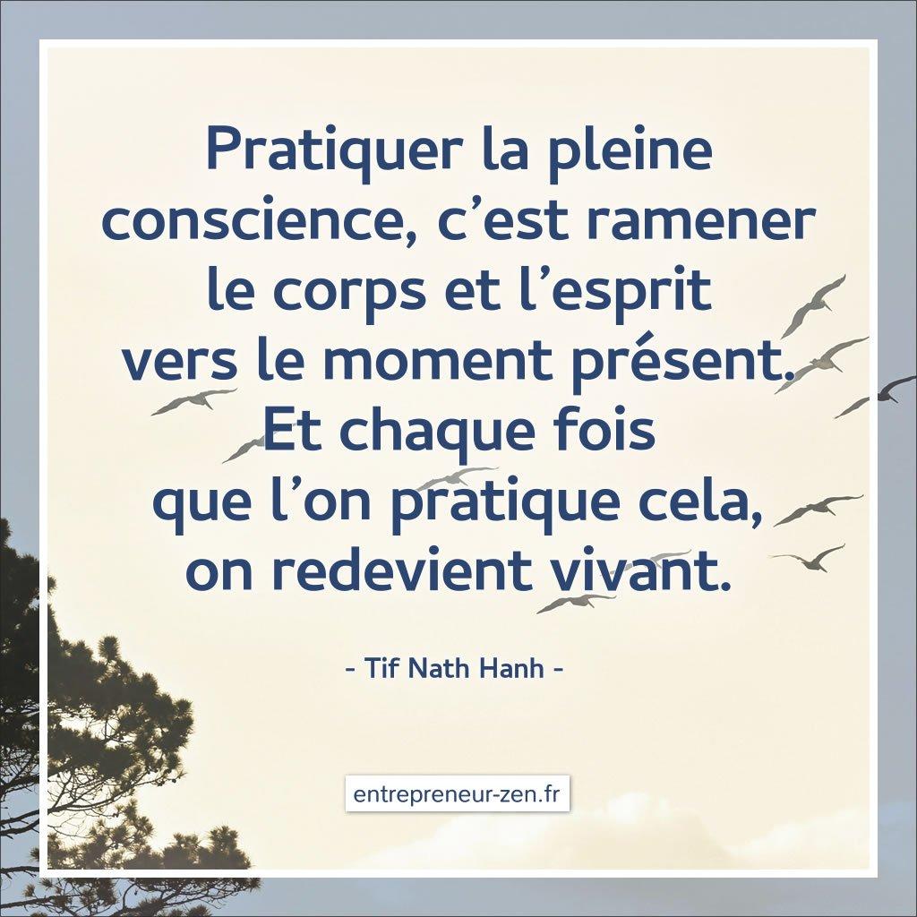 Pratiquer la pleine conscience, c'est ramener le corps et l'esprit vers le moment présent. Et chaque fois que l'on pratique cela, on redevient vivant. (Tif Nath Hanh)