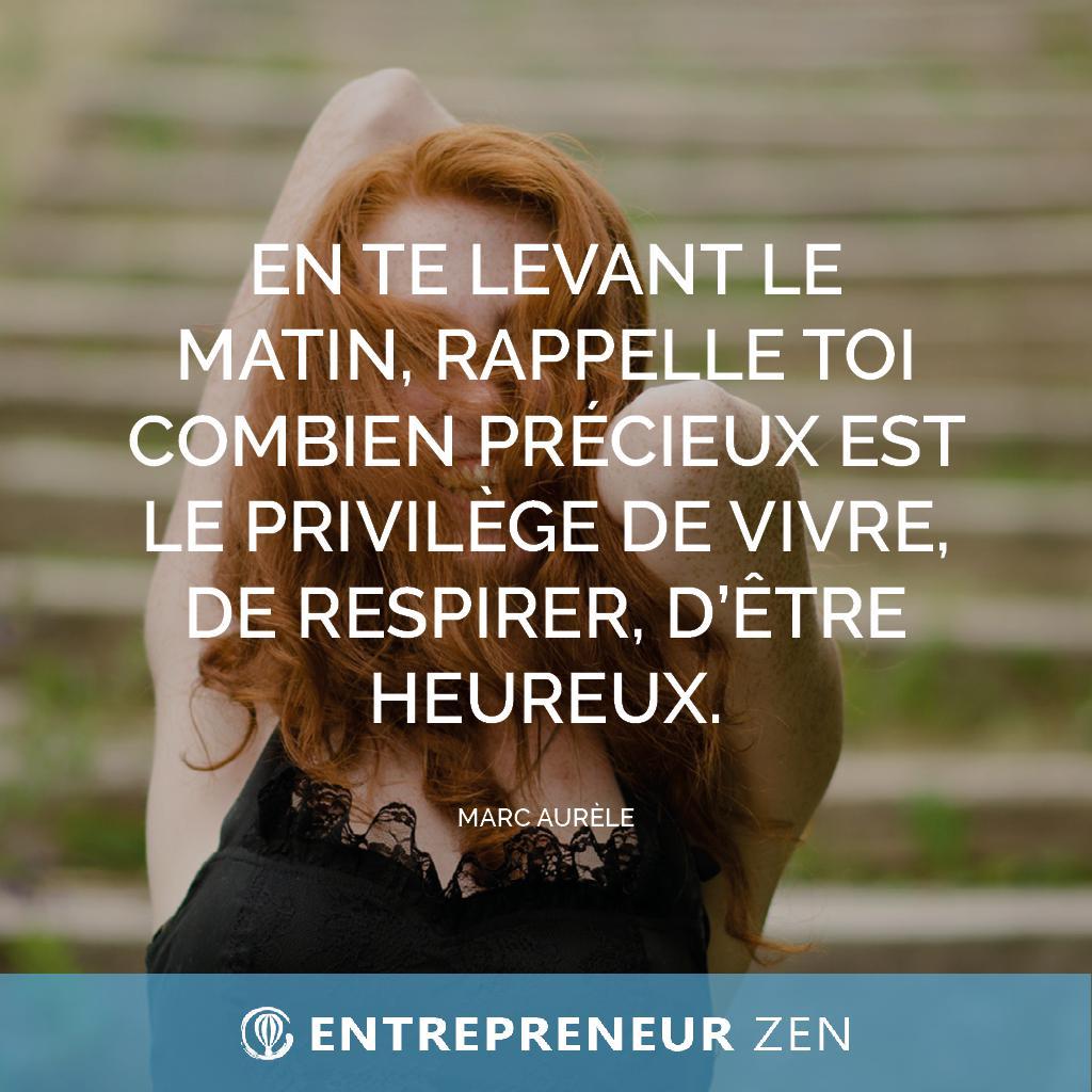 En te levant le matin, rappelle toi combien précieux est le privilège de vivre, de respirer, d'être heureux - Marc Aurèle