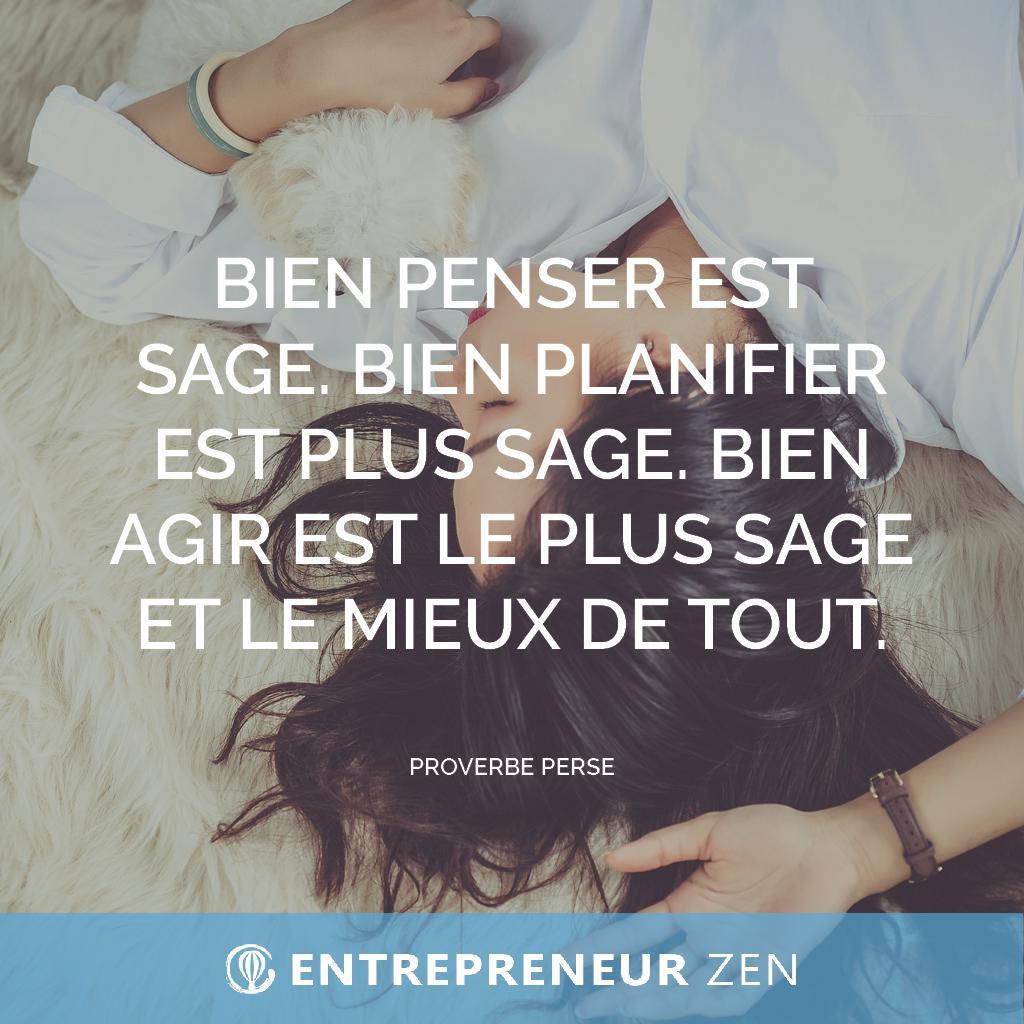 Bien penser est sage. Bien planifier est plus sage. Bien agir est le plus sage et le mieux de tout - Proverbe perse