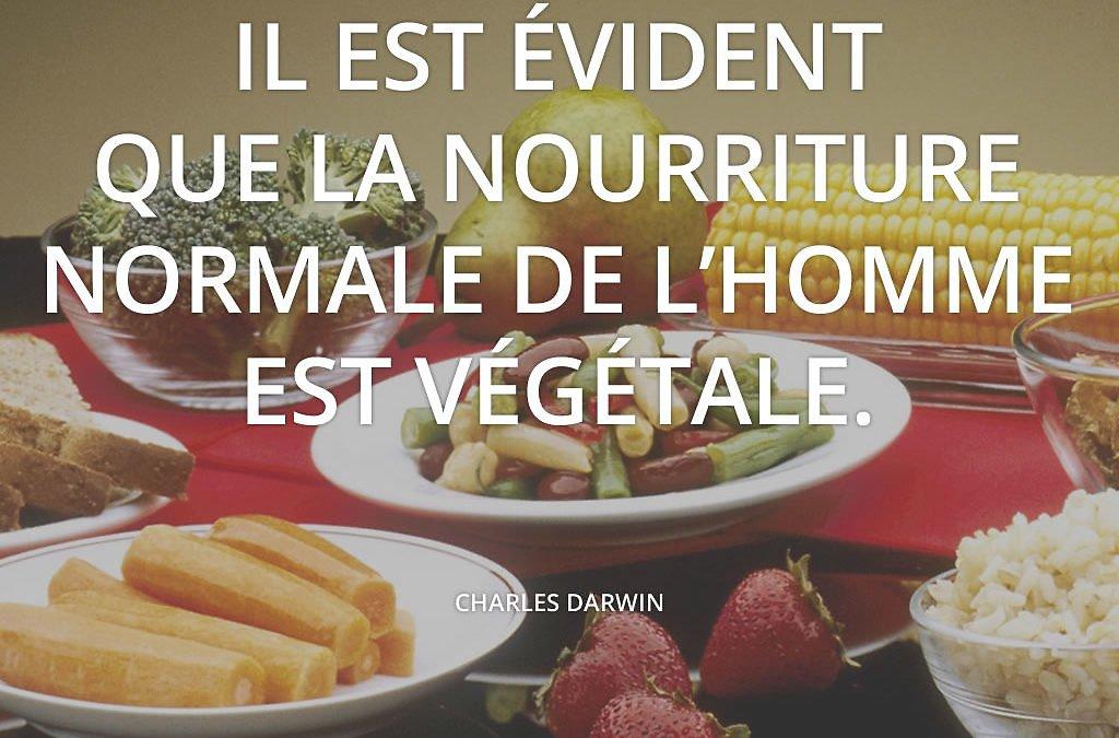 Les bienfaits de l'alimentation végétale