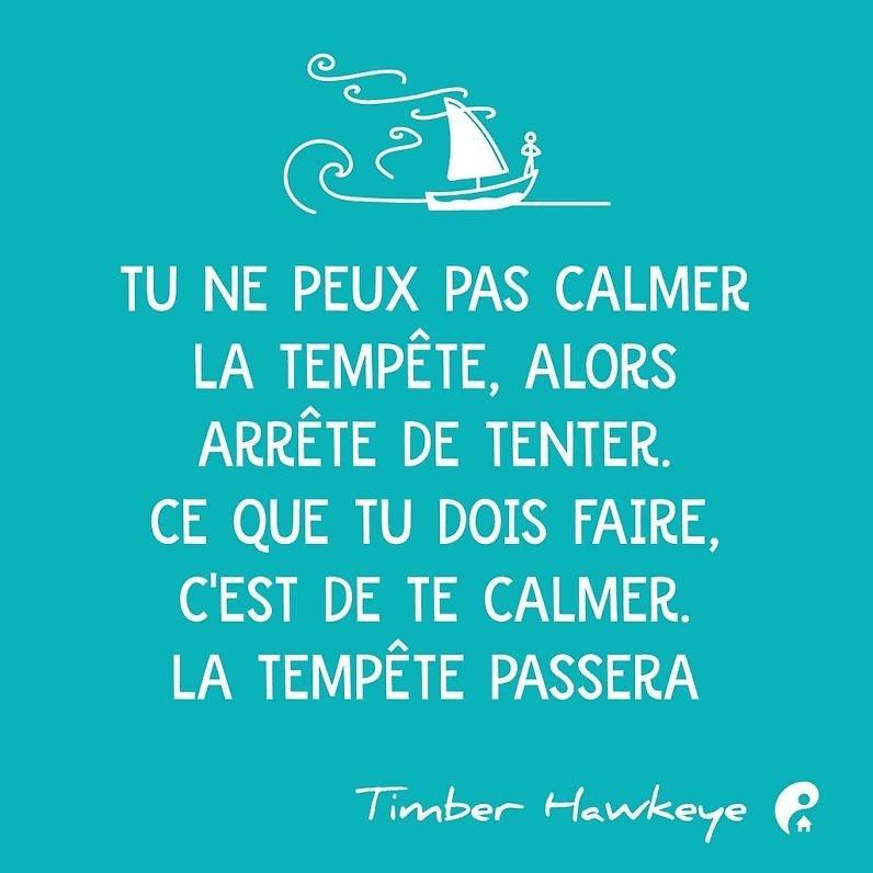 Tu ne peux pas calmer la tempête, alors arrête de tenter. Ce que tu dois faire, c'est de te calmer. La tempête passera. (Timber Hawkeye)