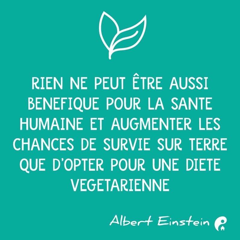 Rien ne peut être aussi bénéfique pour la santé humaine et augmenter les chances de survie sur terre que d'opter pour une diète végétarienne. (Albert Einstein)